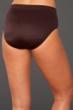 Magicsuit Brown Classic Brief Swim Bottom
