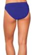 Profile by Gottex Lapis Brief Swim Bottom