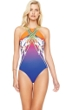 Gottex Ombre Iris Sunrise High Neck Strappy Back One Piece Swimsuit