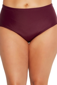 Raisins Curve St Vincent Mid Rise Plus Size Swim Brief in Maroon
