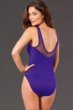 Miraclesuit Eggplant DD-Cup Rendezvous Underwire One Piece Swimsuit