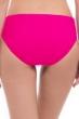 Profile by Gottex Tutti Frutti Rose Brief Swim Bottom
