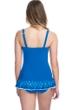 Profile by Gottex Tutti Frutti Blue D-Cup Scoop Neck Laser Cut Underwire Swimdress