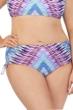 Raisins Curve Plus Size Stolen Heart Adjustable Hipster Bikini Bottom