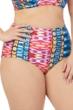 Raisins Curve Plus Size Around The World High Waist Bikini Bottom
